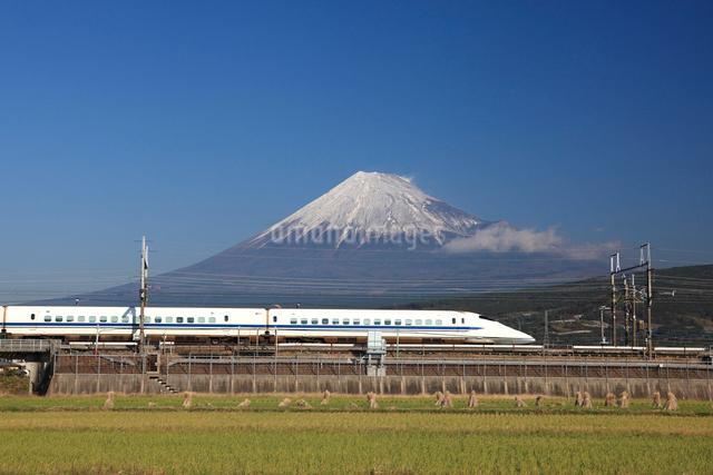 富士山を背景に走る東海道新幹線の写真素材 [FYI03012657]