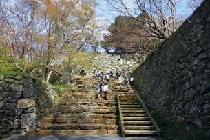 鶴山公園で催される津山さくらまつりの写真素材 [FYI03012705]