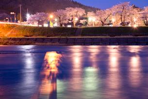 桧木内川堤の夜桜の写真素材 [FYI03012781]