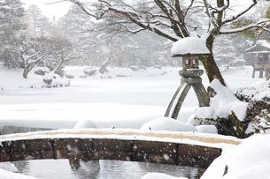 雪をかぶる兼六園のことじ灯籠の写真素材 [FYI03013098]