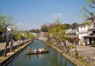 桜咲く倉敷美観地区でくらしき川舟流しの写真素材 [FYI03013169]