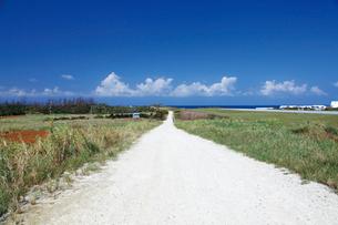 ヨロンマラソンの開催される与論島の道の写真素材 [FYI03013184]