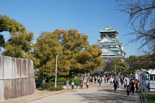 春の大坂城跡の写真素材 [FYI03013204]