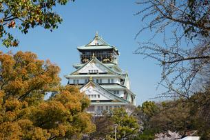 春の大坂城跡の写真素材 [FYI03013248]