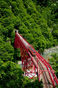 やまびこ展望台より眺める黒部峡谷トロッコ列車の写真素材 [FYI03013485]