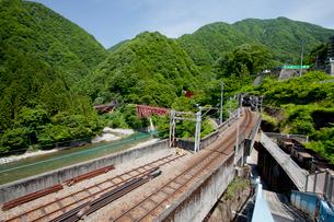 やまびこ遊歩道より眺める黒部峡谷トロッコ列車の写真素材 [FYI03013486]
