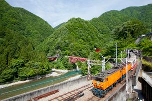やまびこ遊歩道より眺める黒部峡谷トロッコ列車の写真素材 [FYI03013490]