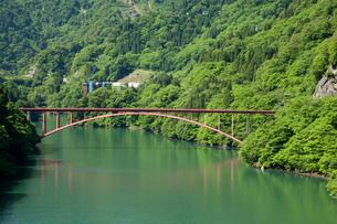 初夏の庄川峡の写真素材 [FYI03013494]