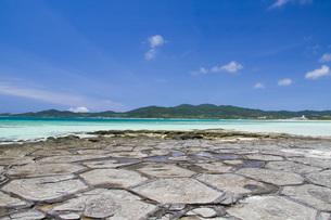 カメの甲羅のような岩が並ぶ奥武島の畳石の写真素材 [FYI03013608]