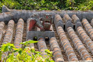 屋根に設置された魔除けのシーサー像の写真素材 [FYI03013638]