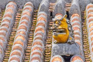 屋根に設置された魔除けのシーサー像の写真素材 [FYI03013640]