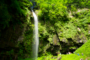 前谷川の上流に位置する阿弥陀ケ滝の写真素材 [FYI03013670]