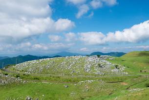 石灰岩が点在する四国カルスト県立自然公園の風景の写真素材 [FYI03013785]