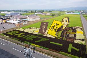 田舎館村にて田んぼアートで表現された真田丸の写真素材 [FYI03014498]