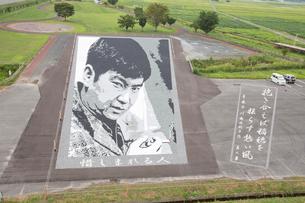 田舎館村にて石アートで表現された石原裕次郎の写真素材 [FYI03014499]