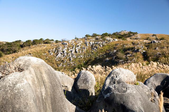 日本三大カルストの一つにも数えられる平尾台の風景の写真素材 [FYI03014916]