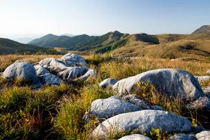 日本三大カルストの一つにも数えられる平尾台の風景の写真素材 [FYI03014925]