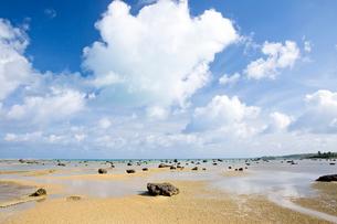 無数の岩が転がる佐和田の浜の風景の写真素材 [FYI03014984]