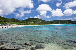 座間味島の古座間味ビーチの写真素材 [FYI03015119]