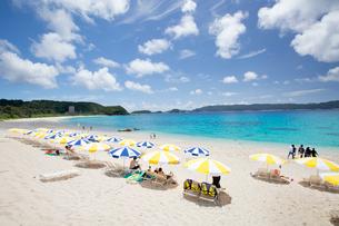 座間味島の古座間味ビーチの写真素材 [FYI03015124]