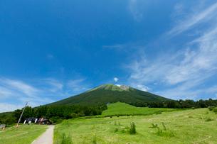 桝水高原から眺める大山の写真素材 [FYI03015229]