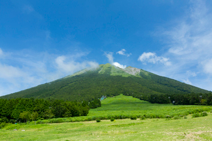 桝水高原から眺める大山の写真素材 [FYI03015234]