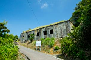 加計呂麻島の金子手崎防備衛所の遺構の写真素材 [FYI03015339]