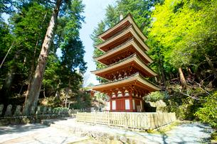 室生寺の五重塔の写真素材 [FYI03015554]