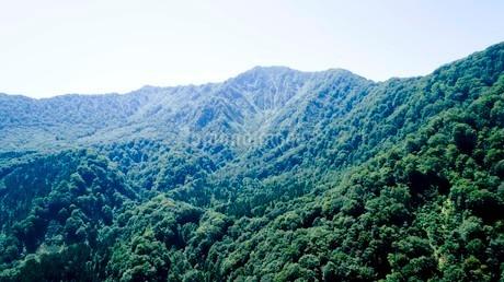 緑深い真夏の白神山地の写真素材 [FYI03015849]