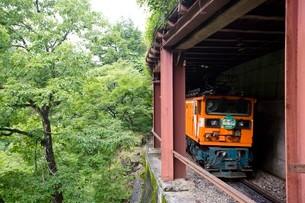 走行中の黒部峡谷トロッコ列車の写真素材 [FYI03015873]