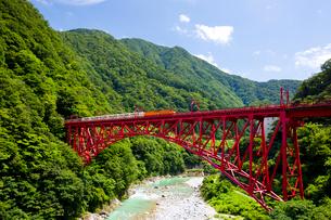 新山彦橋を走行中の黒部峡谷トロッコ列車の写真素材 [FYI03015888]