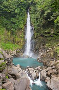 山深い渓谷を流れる千里ヶ滝の写真素材 [FYI03016438]