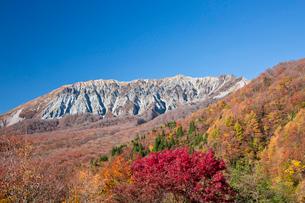 鍵掛峠から望む紅葉の大山の写真素材 [FYI03016958]