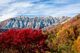 鍵掛峠から望む紅葉の大山の写真素材 [FYI03016970]