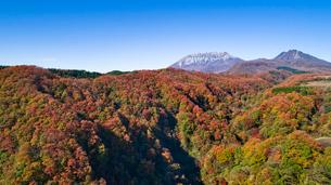 上空から眺める大山の写真素材 [FYI03016977]