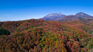 上空から眺める大山の写真素材 [FYI03016978]