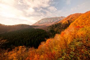 鍵掛峠から望む紅葉の大山の写真素材 [FYI03016980]