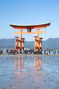 宮島 嚴島神社の大鳥居の写真素材 [FYI03016994]