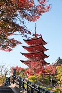 宮島 嚴島神社の五重塔の写真素材 [FYI03017010]