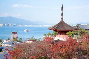 宮島 嚴島神社の多宝塔と大鳥居の写真素材 [FYI03017013]