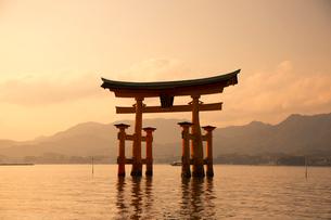 夕景の宮島 嚴島神社の大鳥居の写真素材 [FYI03017015]