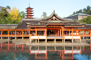 宮島 嚴島神社の社殿と回廊の写真素材 [FYI03017023]