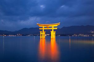 夜の宮島 嚴島神社の大鳥居 ライトアップの写真素材 [FYI03017028]