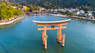 上空から眺める宮島 嚴島神社の大鳥居と社殿の写真素材 [FYI03017030]
