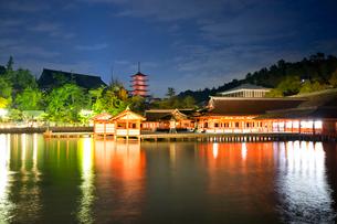 夕景の宮島 嚴島神社の社殿の写真素材 [FYI03017034]