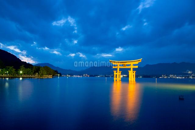 夜の宮島 嚴島神社の大鳥居 ライトアップの写真素材 [FYI03017038]