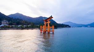 上空から眺める夕景の宮島 嚴島神社の大鳥居の写真素材 [FYI03017050]
