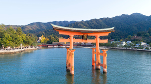 上空から眺める宮島 嚴島神社の大鳥居と社殿の写真素材 [FYI03017061]