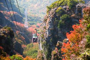 紅葉の中の寒霞渓ロープウェイの写真素材 [FYI03017083]