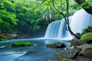 阿蘇の鍋ヶ滝の写真素材 [FYI03017434]